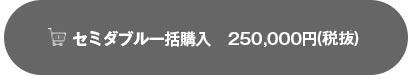 セミダブルを25万円で申し込む
